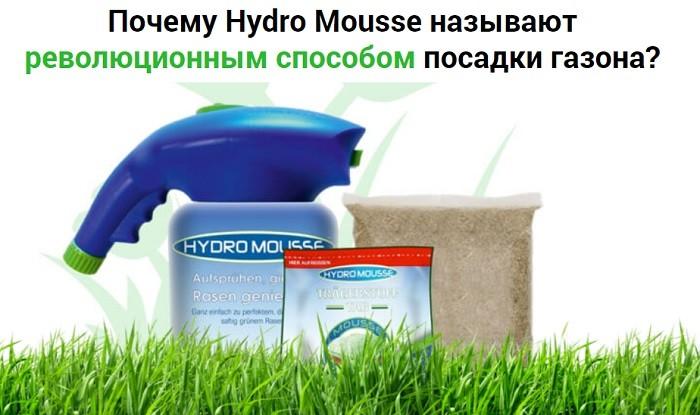 Фото жидкий газон hydro mousse